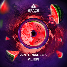 Кальянная смесь Space Smoke 125 гр. Watermelon Aliean