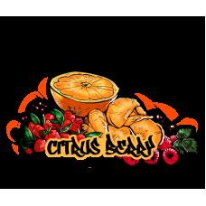 Табак для кальяна B3 Berry Citrus