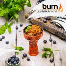Табак для кальяна Burn 200 гр Blueberry Mint