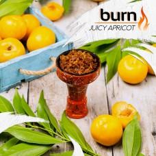 Табак для кальяна Burn 200 гр Juice Apricot